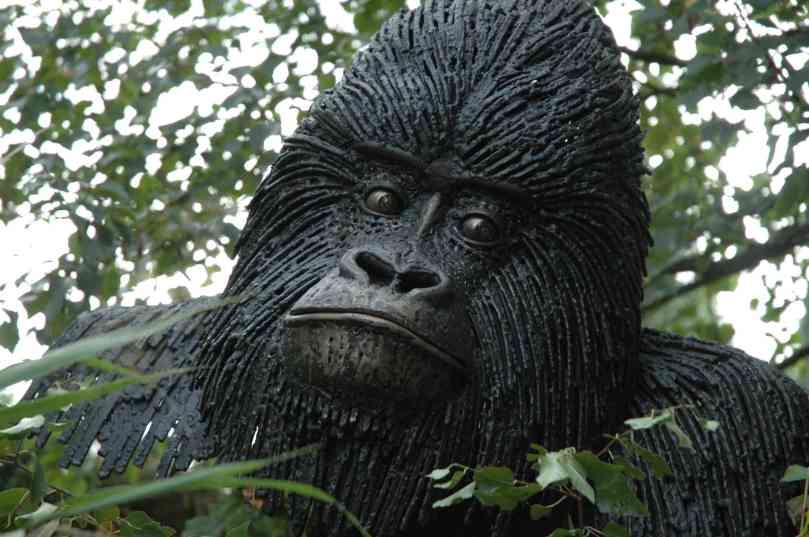 Affenstark, der Gorilla in Lebensgröße.  Foto (c): Brigitte Meiners